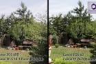 Canon 60D vs. 6D összehasonlító videó